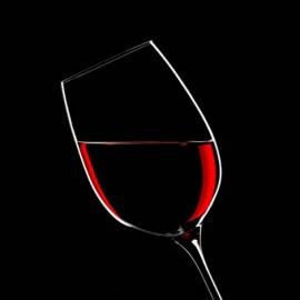 vin haasavocats