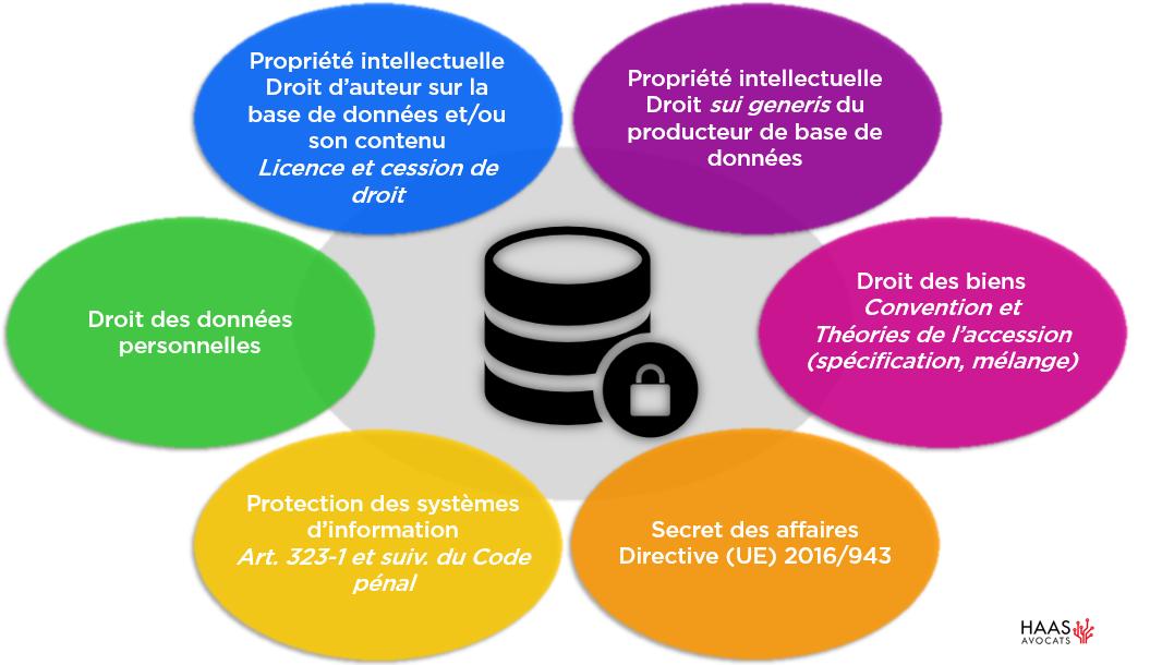 protection des données 1